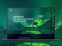 Hagnaven Webdesign