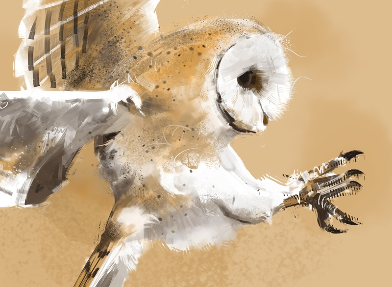 109 owl garbage color photoshop illustration