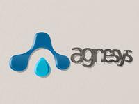 Agnesys branding