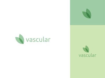 vascular plant vascular logodesign logo leaf