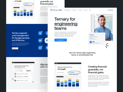 Ternary for Engineering Teams logo colors typography dashboard interface research brand strategy branding visual identitiy development cms website saas b2b product design web design design user experience ux ui