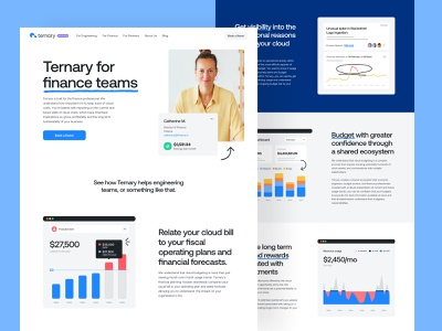 Ternary for Finance Teams app interface website logo colors typography cloud finops saas b2b brand strategy branding visual identitiy development cms web design product design user experience ux ui