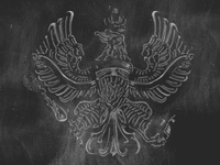 Eagle Shadow