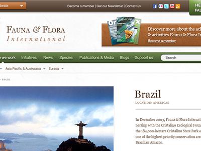 Fauna and Flora International re-design brown greem mud-orange fauna and flora