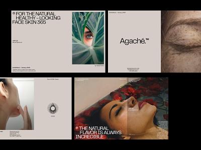 Agache Layout skin product beauty skincareherbal skincare ui header user interface design web design layout logo typography branding