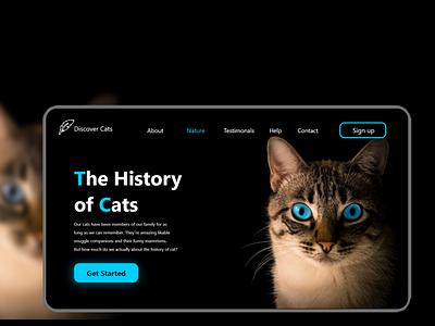 Web (History of cat) uidesigner ui designers ux design uidesing uidesigns ui designs ui  ux ui design uiux uidesign