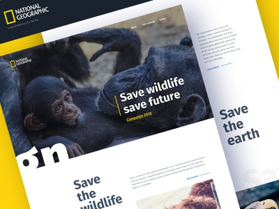 Save wildlife, Save future gmail google design creative color gradient typography ui ux animal. national geography