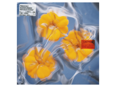 Prblm Chld - Navy Blue abstract art sleeve orange warml blue yellow blender 3d flowers lp cd ep cover album