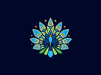 Peacock Patterns In YUNNAN
