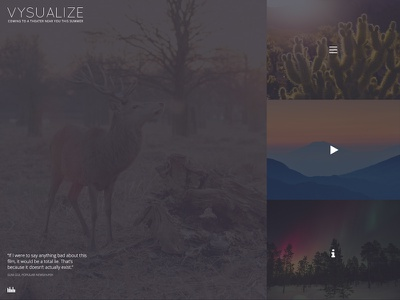 VYSUALIZE WordPress Theme video theme film movie wordpress