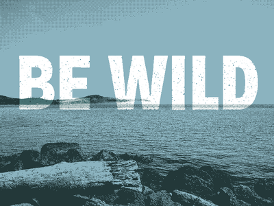 Be Wild [Low-res] lowres optimized art art fun poster photoshop web wild