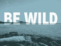 Be Wild [Low-res]