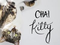Chai Kitty