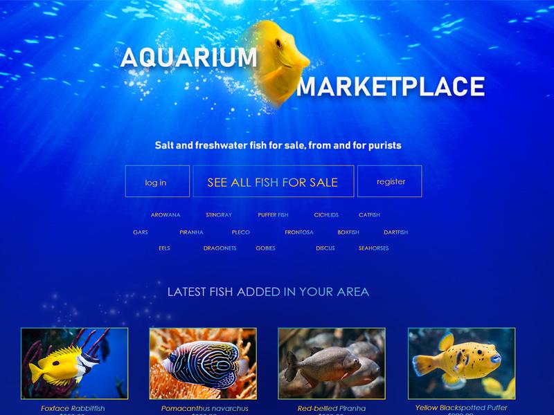 Aquarium Marketplace Concept market fish blue design website web