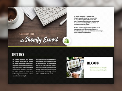 Shopify Expert sub website