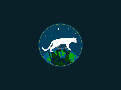 POTOW cat space stars earth world planet panthers animal illustration mark vector logo