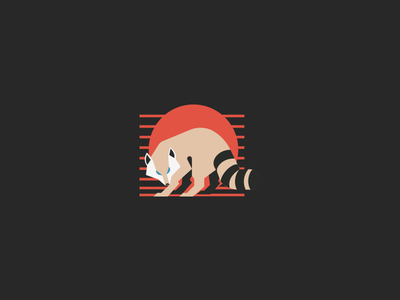 Racc illustration stripes sun coon raccoon vector animal logo