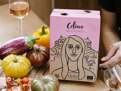 Wine Box Packaging liquor wine packaging organic branding packaging design hand drawn character illustration vector