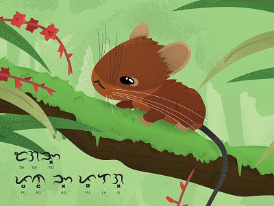 Mt. Pulag Tree-mouse baybayin biodiversity philippines mouse