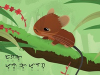 Mt. Pulag Tree-mouse