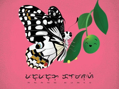 Lime Swallowtail pink butterfly filipino biodiversity baybayin