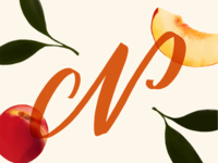 N is for Nectarine // 36 Days of Type