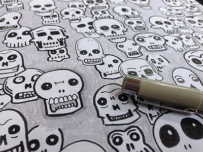 Skulls sketch drawing
