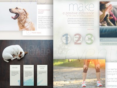 ASF Website design web shelter pets cats dogs home homepage ui interface layout website
