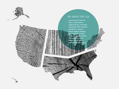 Rustic America nwse regions bw tree rings usa