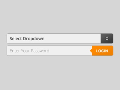Dropdown, Password and Enter Form Elements form fields field dropdown password enter go login orange grey gray