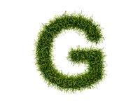 Green Perfection Mark