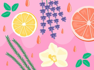 All About Essential Oils lifestyle wellness header email illustration design illustration