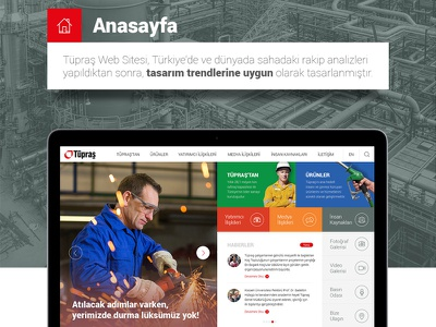 Tüpraş Web Design ux ui casestudy presentation responsive website web
