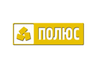 Brand POLYUS-GOLD logo illustration design branding