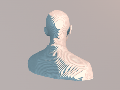 Obama Profile in Topography dailyrender obama topography c4d cinema4d head glitch illustration low-poly