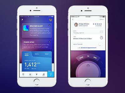 Utility App Shot 2 ux ui layout design app ios