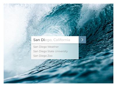 Surfs Up google sandiego search day022 dailyui
