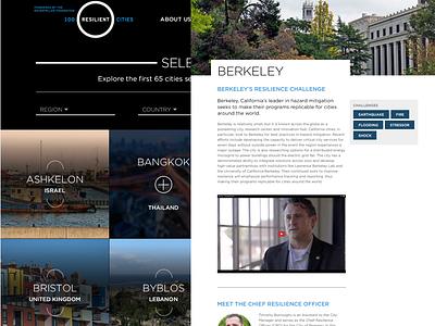100 Resilient Cities thumbnails detail web design responsive grid