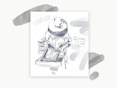 Bee Metaphor Exploration for Ironclad sketch process procreate branding illustration beeswax beekeeper bees
