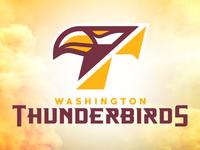 Washington Thunderbirds Identity