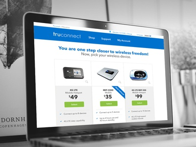 Truconnect Payment Page Design