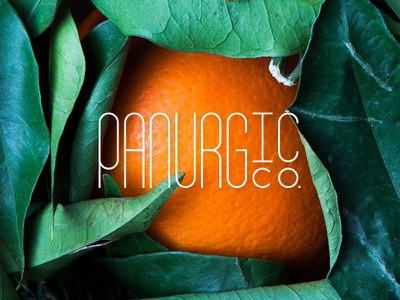 Panurgic art text typeface logo design