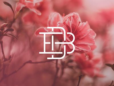 DB Monogram vector branding graphics design db logo monogram