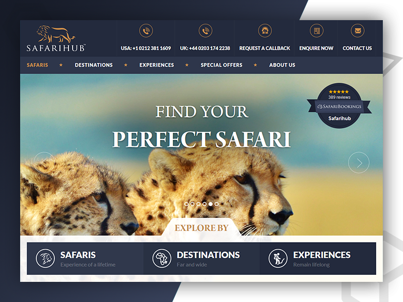 SafariHub - Web Design & Develop By Pixlogix web development web design