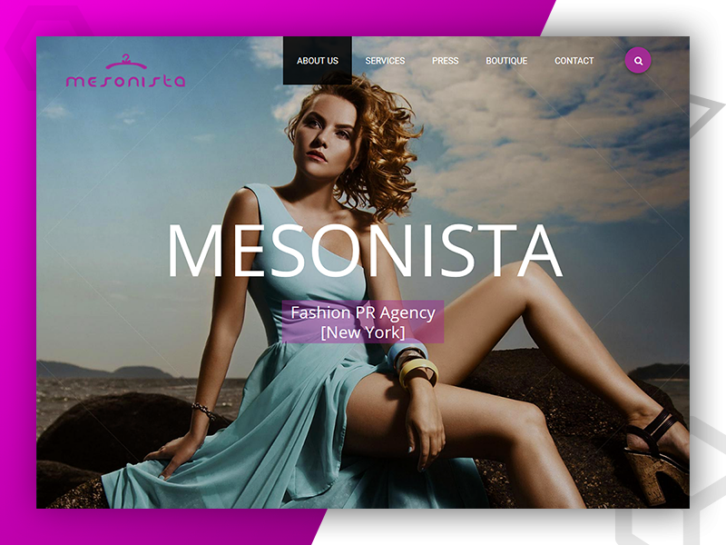 Mesonista - Web Design and Developed by Pixlogix web development web design graphic design