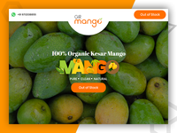 Gir Mango - online food ordering website design and development