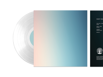 Record Sleeve Concept vinyl record