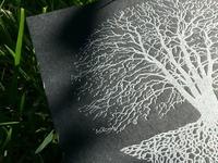 Silent Season Letterpress