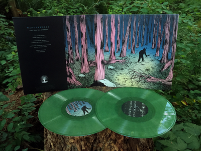 Wanderwelle (Silent Season) Album Artwork nature music folklore record vinyl