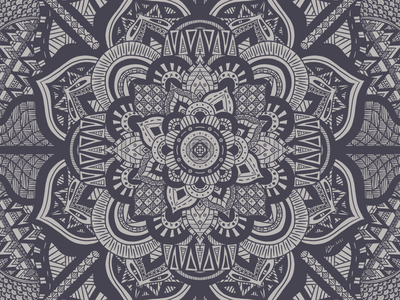 Endeavor patterns symmetry procreate illustration digital illustration